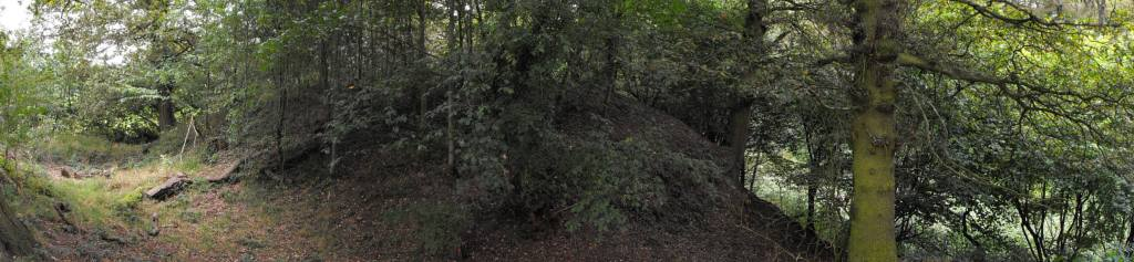 The overgrown site of Watch Hill Castle