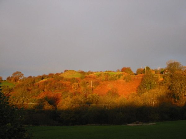 The_Knapp,_Castle_Pulverbatch,_Shropshire_-_geograph.org.uk_-_121350